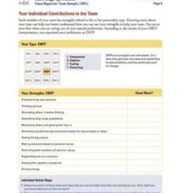 Sample MBTI Team Report